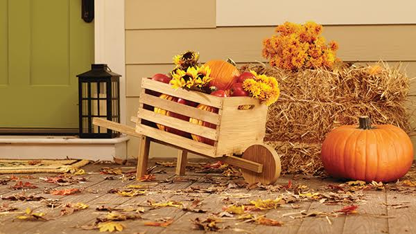 home-depot-dih-wheelbarrow