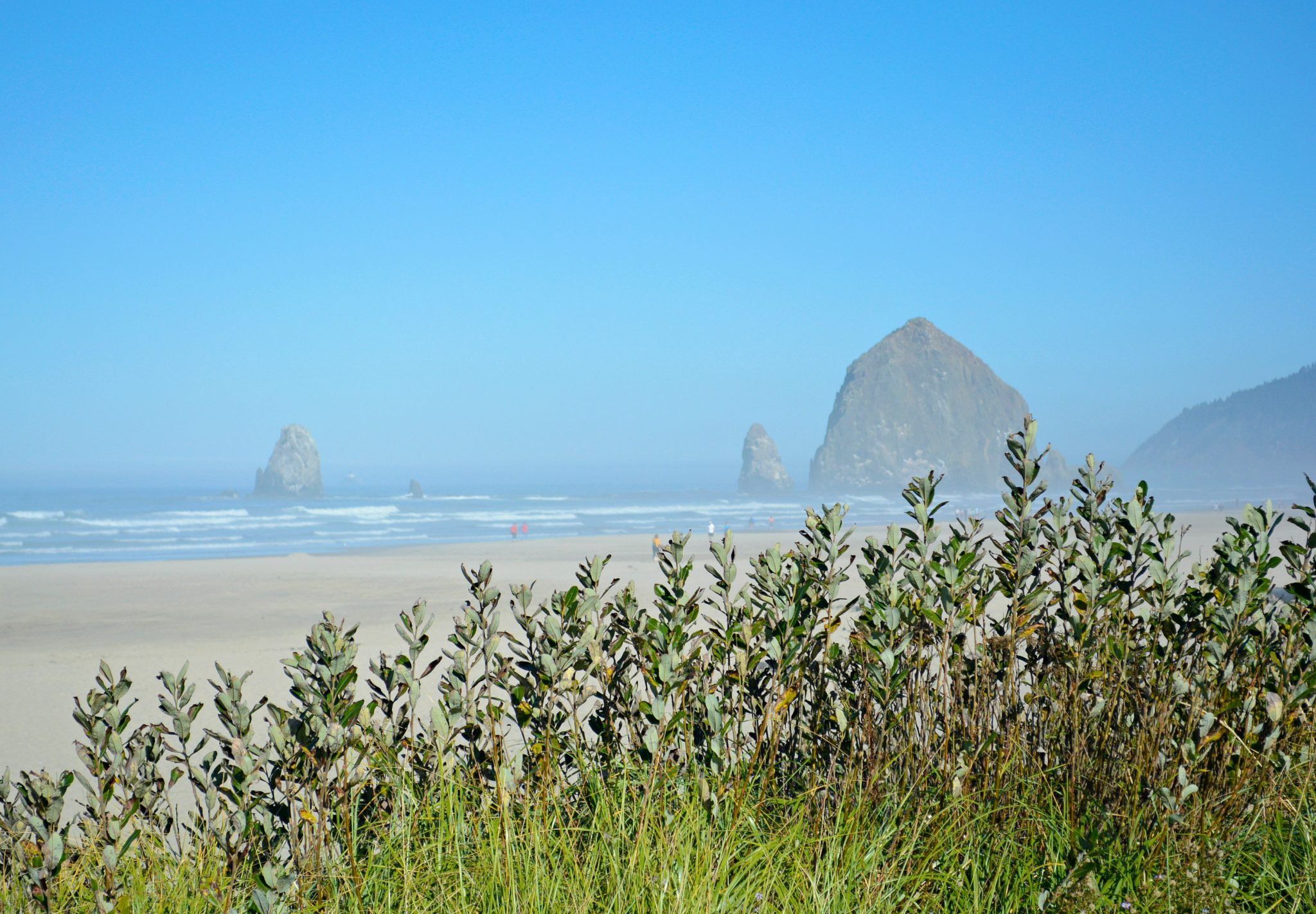 Haystack Rock at Cannon Beach Oregon