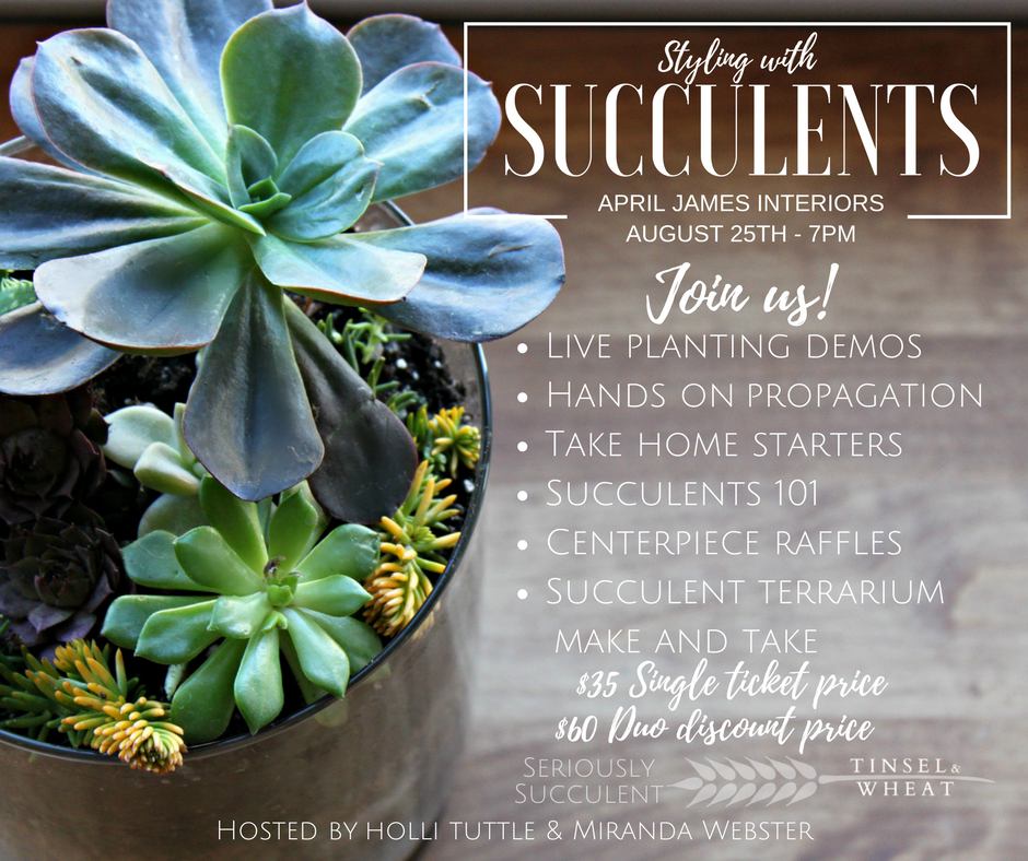 Styling with Succulents Workshop in Utah County