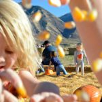 Berts Family Farm Pumpkin Patch – Spanish Fork Utah