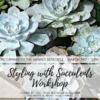 Styling With Succulents Workshop Coming To The Market Beautiful